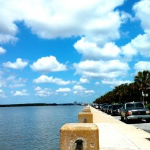 A beautiful day along the Low Battery in Charleston, SC