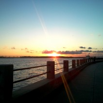 The sun glinting as it drops behind the Ashley River in Charleston, SC