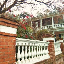 Berries brighten up an 1850's Charleston house and wall on a winter day