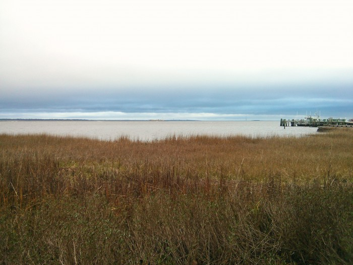A wintry view of Charleston Harbor, including Shute's Folly and Castle Pinckney