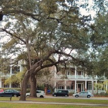 """These two houses, built in 1845, are the only survivors of seven identical houses that once stood in a row. Known as the """"Seven Wages,"""" they were built by William Aiken as rental properties and the income generated by them was used to support the now named Aiken-Rhett House."""