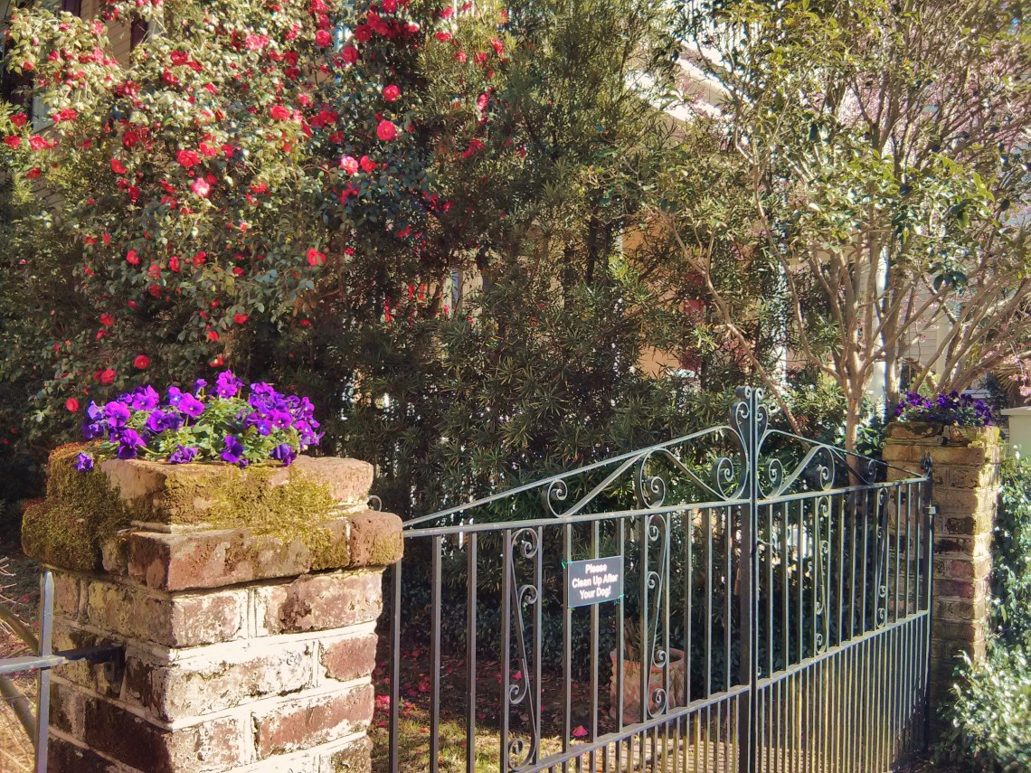 It shouldn't be surprising that even the gateposts in Charleston, SC , burst with flowers.