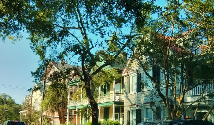 The evening light making a row of beautiful Charleston, SC houses glow.