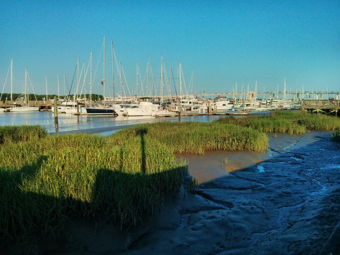 Low tide and the early morning sun at the Charleston City Marina.