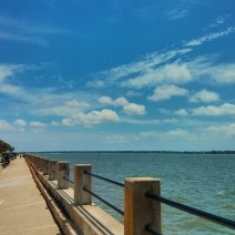 Protecting the west side of the Charleston peninsula, the Low Battery keeps the Ashley River at bay.