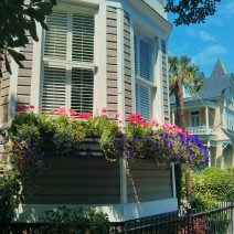 Beautiful flowers and beautiful homes on Broad Street in Charleston, SC.