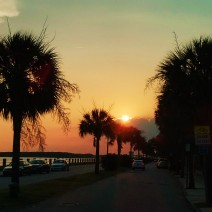Sunset along Murray Boulevard in Charleston, SC... also know as the Low Battery.