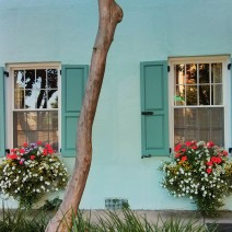 Wonderful flower boxes can be found all along Rainbow Row in Charleston, SC... these are on the southernmost house.