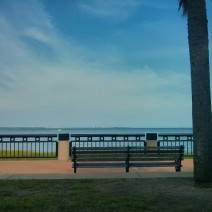 A wonderfully peaceful seat overlooking Charleston Harbor from Waterfront Park in Charleston, SC.