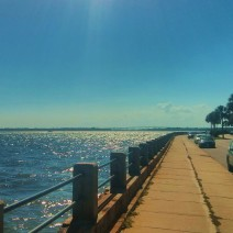The summer sun illuminates the ripples on the water of the Ashley River along the Low Battery in Charleston, SC.