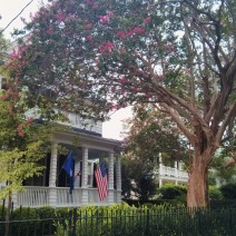 A magnificent Crepe Myrtle tree frames a classic all-American house and flags on Tradd Street in Charleston, SC.