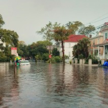 One of the hazards of living on a peninsula in a city at sea level is that when it rains it sometimes floods.