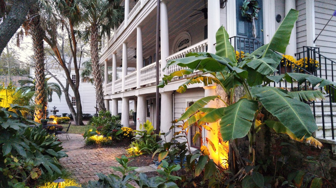 A very Charleston garden lighting up as the sun sets.