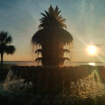 The famed Pineapple Fountain in Charleston, SC welcomes the rising sun.