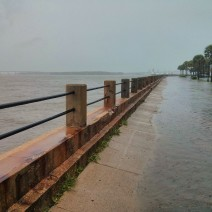 With incredible tides and torrential rains, it was hard to determine which side of the seawall the water actually belonged in Charleston, SC.