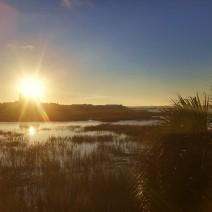 The sun rising over the Charleston peninsula.