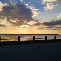 A beautiful sunset along the Low Battery in Charleston, SC.
