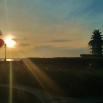 The sun rises above Charleston Harbor, illuminating Waterfront Park and its beautiful Pineapple Fountain.