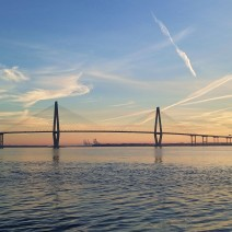 The Ravenel (Cooper River) Bridge in Charleston, SC is one of the longest cable-stayed bridges in the world.