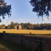 Middleton Place is one of the incredibly beautiful plantations just minutes away from downtown Charleston. If you are visiting, it's worth the time to stroll the incredible grounds.