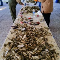 The oysters of the Lowcountry are one of the great treats to eat in the Charleston area. And one of the more fun ways to do it is at an oyster roast. This one was held at Lowndes Grove -- a spectacular site on the Ashley River.