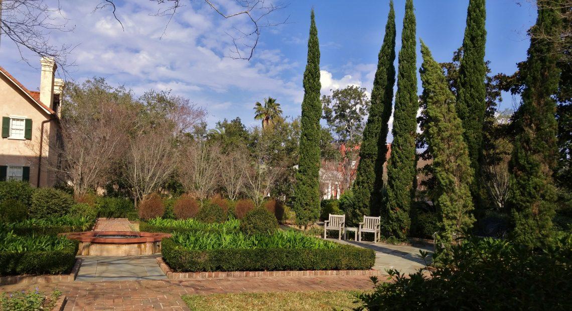 The trees in a beautiful Charleston garden on Montagu Street are still a little shaken from Hurricane Matthew.