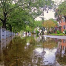 When it rains really hard in Charleston, it floods. As hard as they try to prevent it, it happens... it's just a reality of living in the Lowcountry. Ashley Avenue is a prime spot for pop-up lakes.