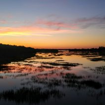 "A beautiful Charleston sunset reflecting in the marshes along the Ashley River behind ""The Joe"" (Joseph P. Riley, Jr. Park), the home of the Charleston RiverDogs -- the New York Yankees' Class A affiliate."