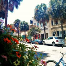 State Street... the essence of Charleston -- window boxes, flowers, a bicycle and wonderful colonial era buildings.