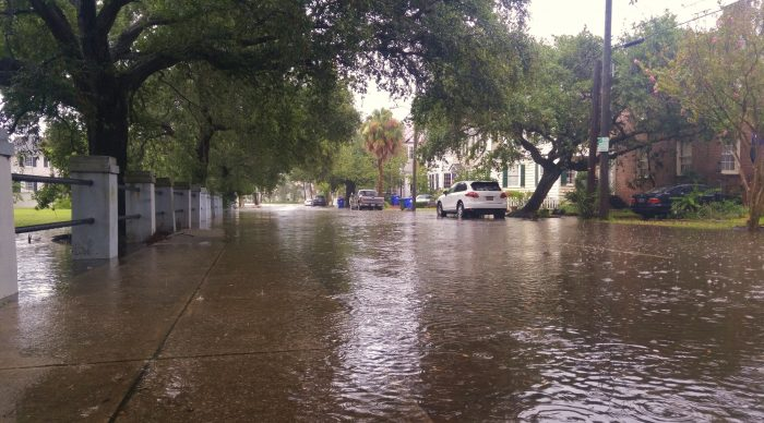 Flooding has always been a part of Charleston life. The frequency is increasing, as any heavy rain and many high tides result in blocked streets. Here Ashley Avenue, along the Horse Lot, is submerged during a recent heavy downpour.