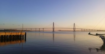 The Ravenel Bridge, aka the Cooper River Bridge, aka THE Bridge in Charleston at sunrise.