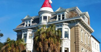 Merry Christmas from Glimpses of Charleston!