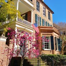 Spring must be around the corner as Charleston is blooming! This gorgeous pre-revolutionary house on Tradd Street was built for Judge Robert Pringle in 1774. The bay window was not part of the original structure, but is a pretty cool addition. The Judge didn't get a lot of time to enjoy the house, as he died in 1776. His son inherited it and it remained in the Pringle family for another hundred years.