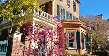 Charleston in Bloom!