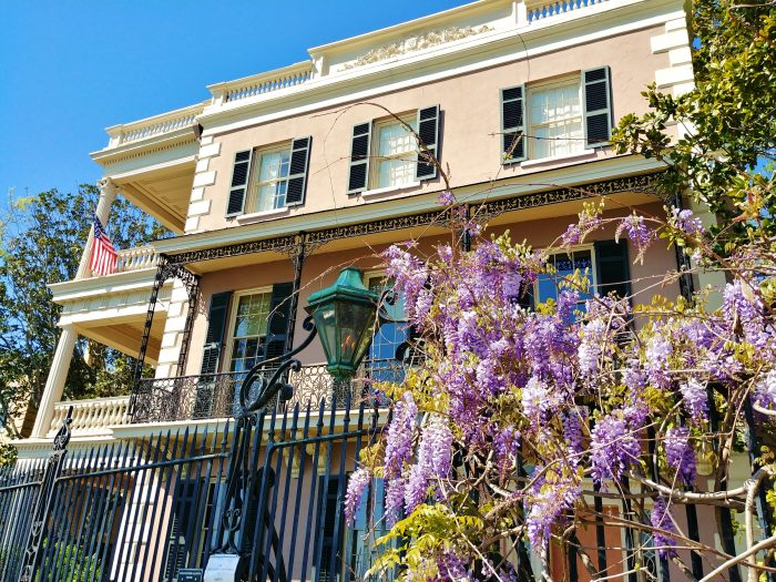 Dressed up in purple for the spring, the Edmonston-Alston House (circa 1825) is one of the beautiful residences along East Battery. Now operated as a museum by the Middleton Place Foundation, it is open to the public. Enjoy a visit!