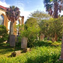 The graveyard at the Unitarian Church in Charleston. Beautiful in its more wild state than other graveyards in Charleston.
