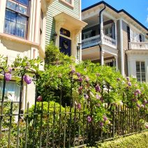 This beautiful scene can be found on the north side ofTradd Street in Charleston.