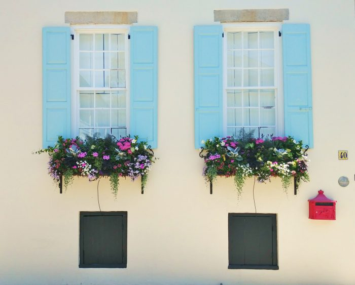 These glorious window boxes and pretty cool shutters (and mailbox) can be found on King Street. So Charleston.