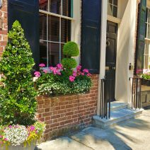 These beautiful plantings are next to the Dock Street Theatre. The building which the theater has occupied since 1935 was built in 1809 as the Planter's Hotel. It was repurposed into a theater after falling into disrepair following the Civil War and was going to be demolished.