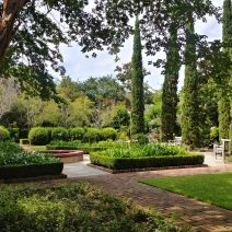 This wonderful Charleston garden is part of a property on Montegu Street which was built in 1800 by Theodore Gaillard. Gaillard was a rice (aka Carolina Gold) planter and merchant.
