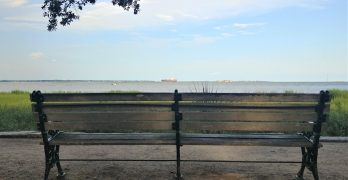 Directly in front of this well situated bench lies Shutes Folly -- the island home of Castle Pinckney. Now privately owned, not much goes on there, but it does fly a multitude of flags.