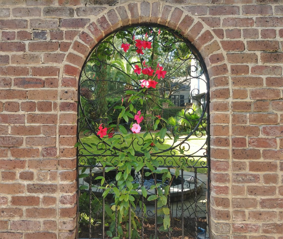 The flower covered view into the garden at 22 Lamboll Street, which served as the rectory for St. Michael's Church from 1895 to 1927, is always a wonderful one.