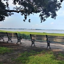 Joe Riley Waterfront Park provides some of the best water views in Charleston. Or just sit on these benches and relax.