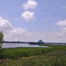 This idyllic scene is actually in downtown Charleston at Brittlebank Park, along the banks of the Ashley River. Charleston is full of such beauty.