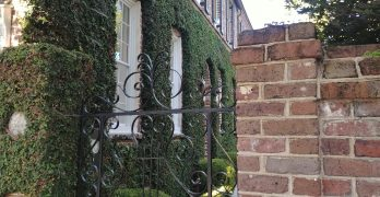 This beautiful Charleston gate on King Street is made from wrought iron -- meaning that each piece was individually heated and then bent by hand (most often hammered over an anvil). Most of the decorative ironwork in Charleston was made this way, as opposed to cast iron where molten metal is poured into a mold, and each piece is identical.
