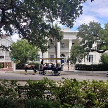 This carriage is pulling some visitors past the Villa Margherita on South Battery. This house has a storied past, both as a residence and a hotel (four US presidents, among others, have stayed there).