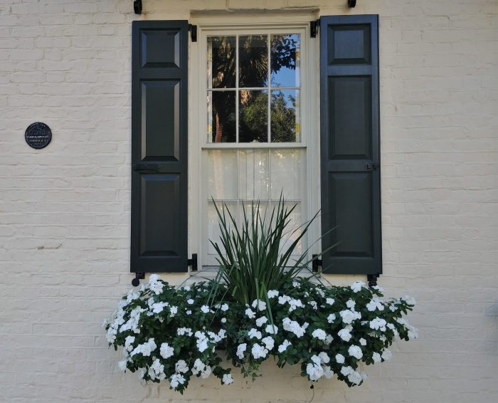 Eye-catching beauty, from small to big, can be found all over Charleston. While this flower box and window may represent a smaller amount, the black disk on the wall indicates something larger. The Carolopolis Award, as represented by the disk, has been bestowed for over 63 years by the Preservation Society of Charleston on properties that have achieved excellence in historic preservation. Look around the city and you will find over 1400 of these symbols.