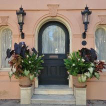 "This wonderful combination of architectural details and beautiful plants can be found on Meeting Street, just across from the Calhoun Mansion. A real ""wow."""