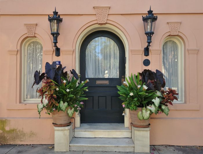 """This wonderful combination of architectural details and beautiful plants can be found on Meeting Street, just across from the Calhoun Mansion. A real """"wow."""""""