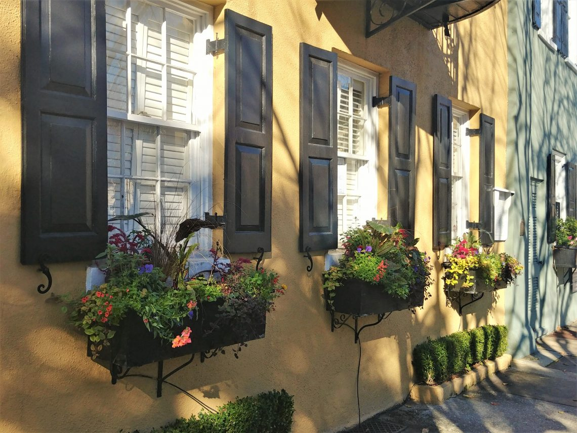 These pretty window boxes can be found on the front of one of the 13 connected Georgian houses that make up the iconicRainbow Row on East Bay Street. A classic Charleston winter scene.